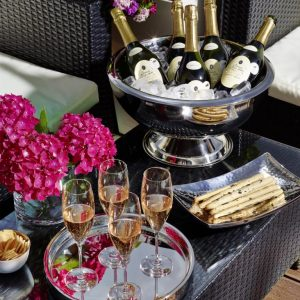 CADIZ-Champagne-Cooler-bowl-h32-EDZARD-9