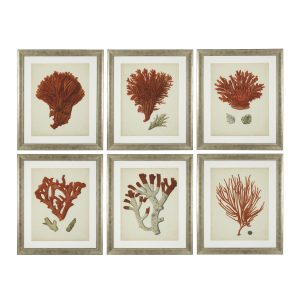 ANTIQUE RED CORALS SET OF 6 PRINTS Eichholtz 111741